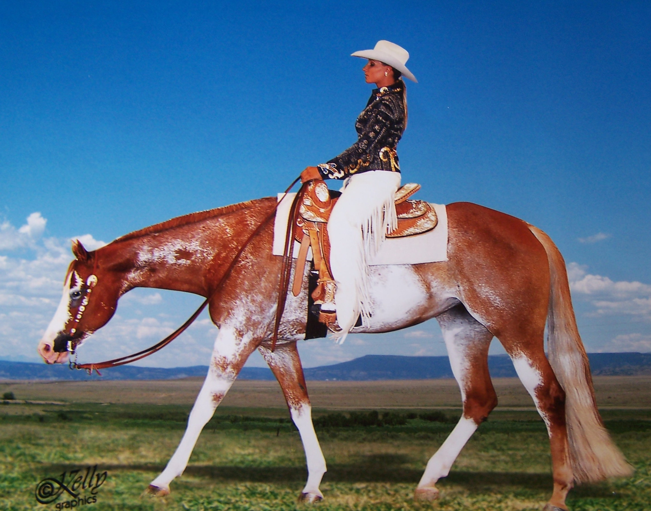 Horse Show Clothing Western Horse Show Apparel Sho N Off